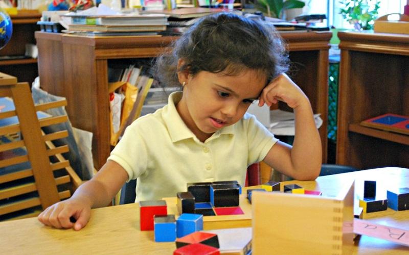 discover montessori curriculum